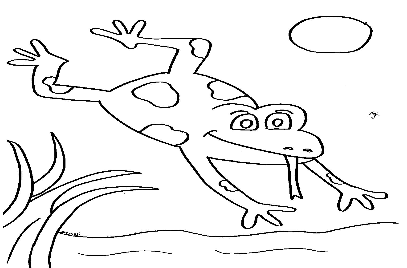 דף צביעה צפרדע