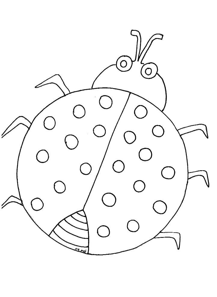 דף צביעה לאביב חיפושית