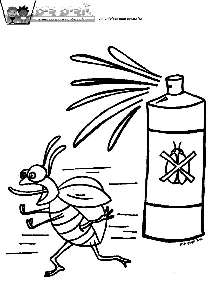 דף צביעה חיפושית