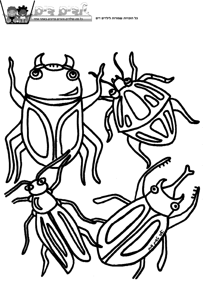 דפי צביעה חיפושיות שונות