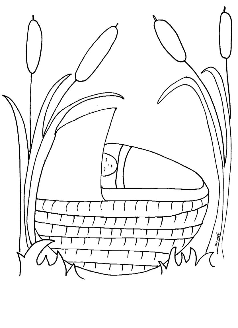 דף צביעה משה בתיבה