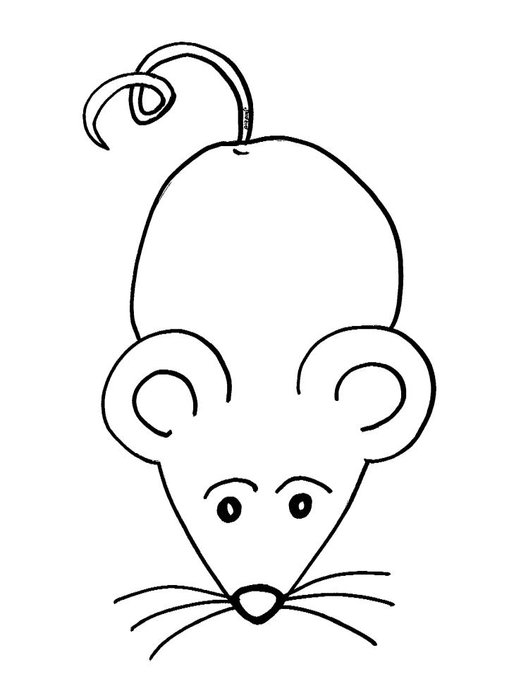 דפי צביעה עכבר