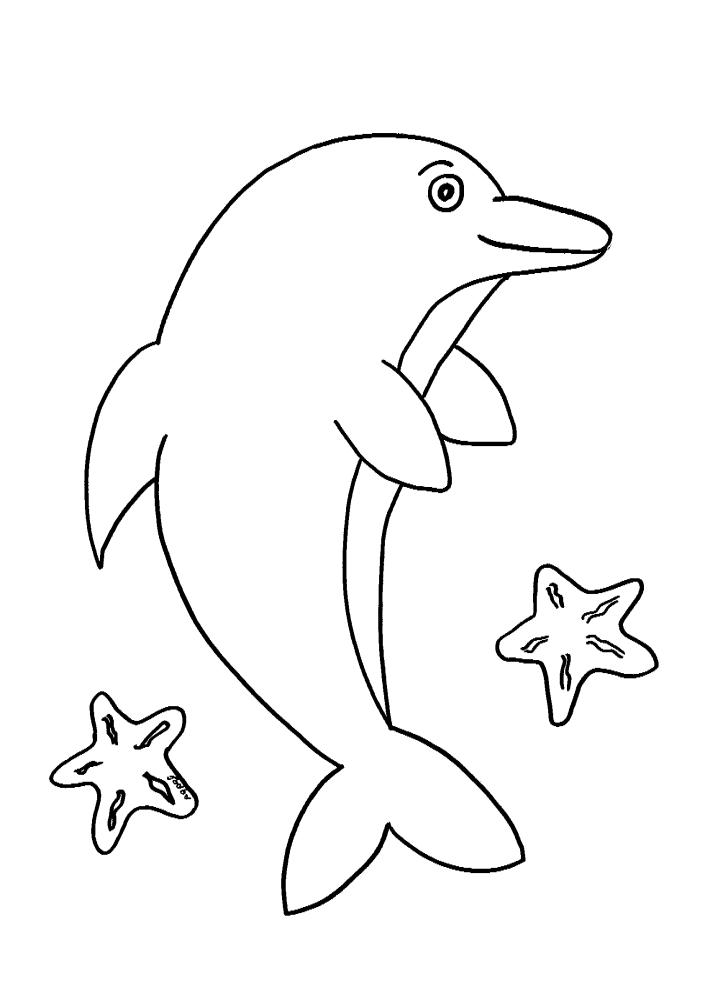 דף צביעה של דולפין