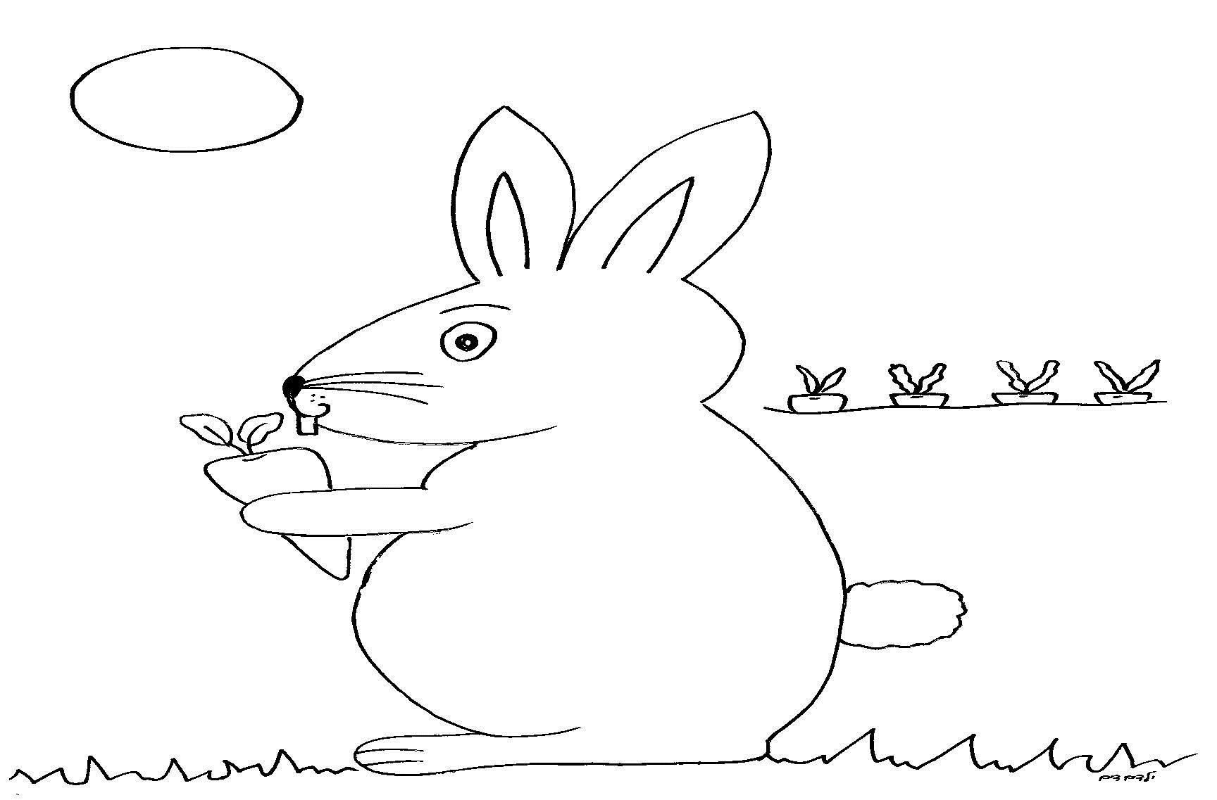 דפי צביעה ארנב