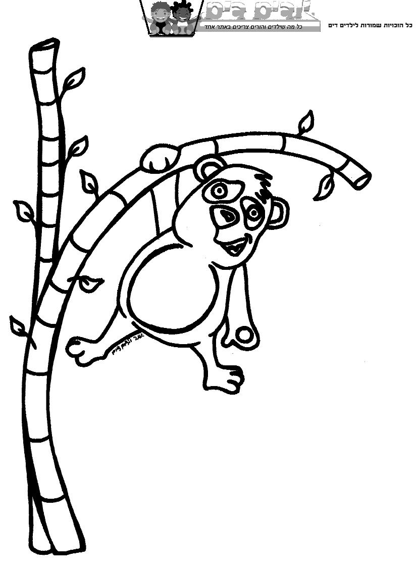 דף צביעה דוב על עץ