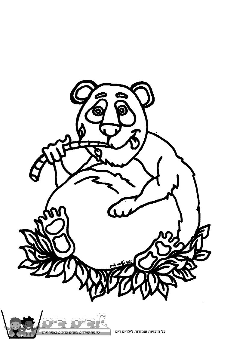 דף צביעה דוב פנדה