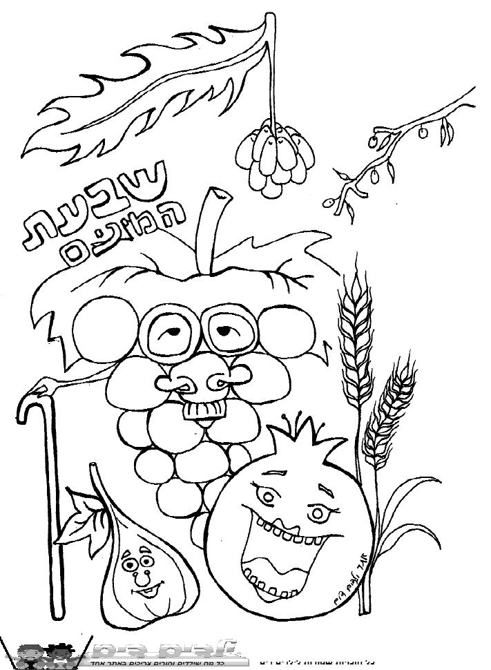 דף צביעה שבעת המינים
