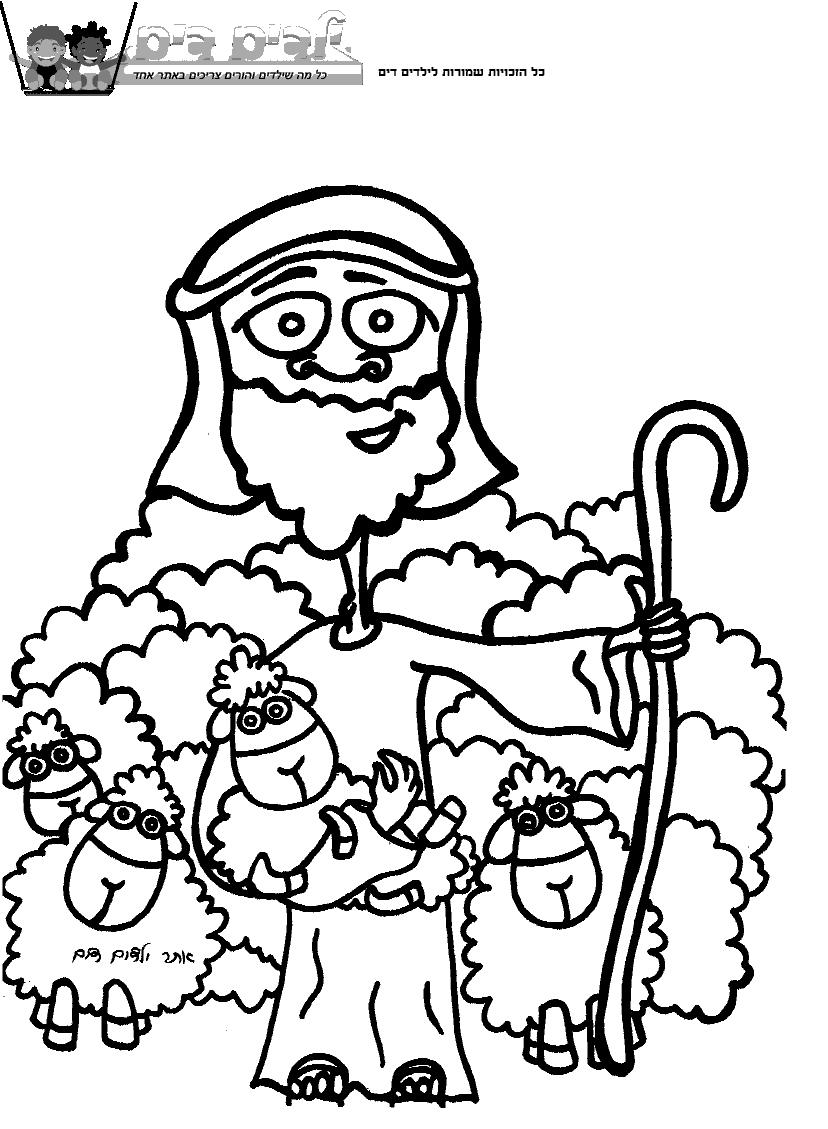 צביעה רועה צאן כבשים
