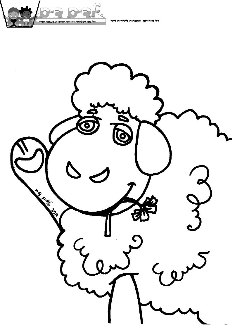 דף צביעה כבש