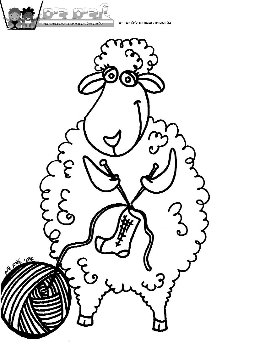 דפי צביעה כבשה סורגת