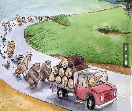 תמונה הלוויה לעצים