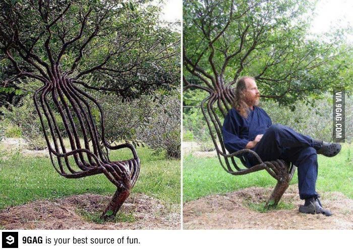 תמונה עץ מיוחד