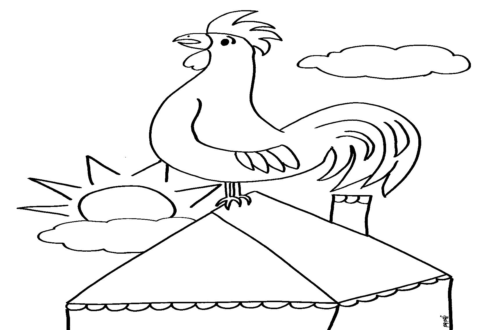 דף צביעה תרנגול