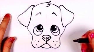 איך לצייר כלבלבון