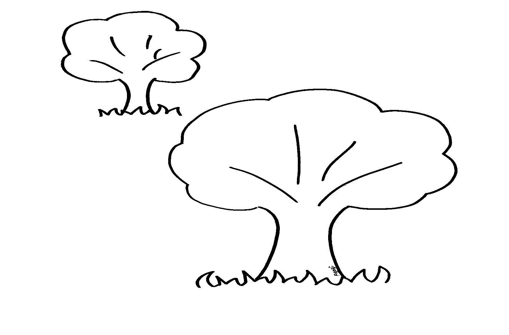 צביעה עצים